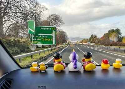 Dash Board Ducks to Inverness